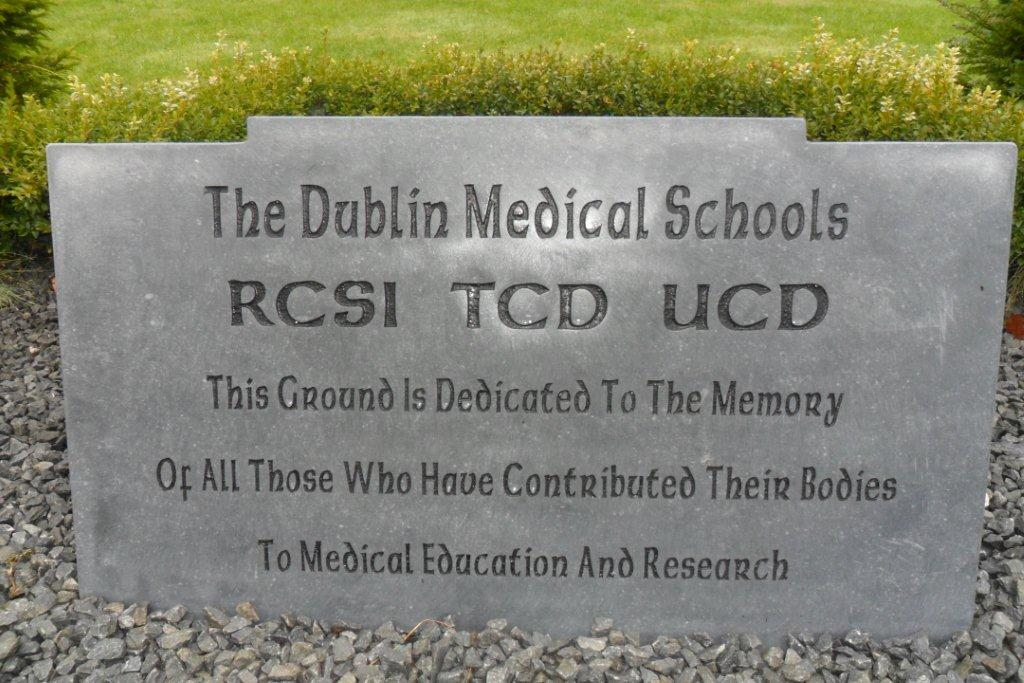 Medical Schools New Stone
